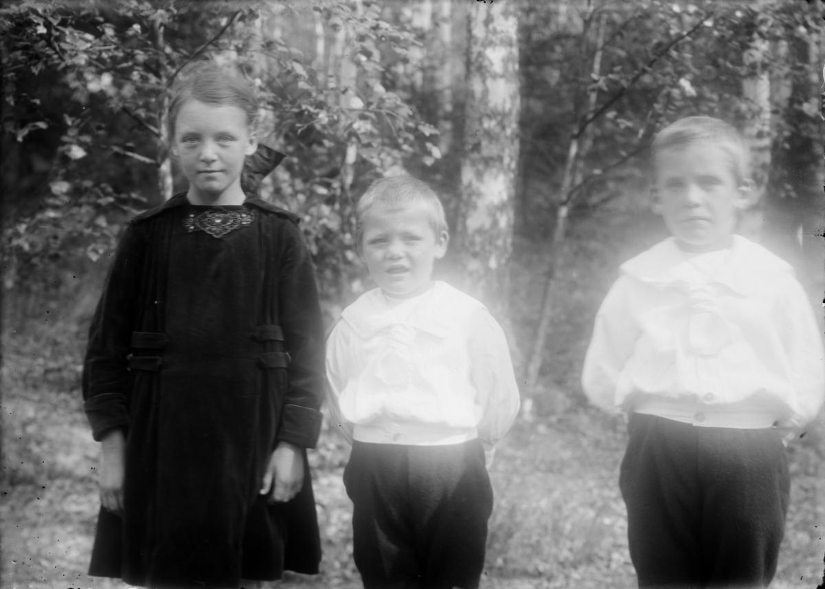 Ragnhild, Erik og Fredrik Bådstø