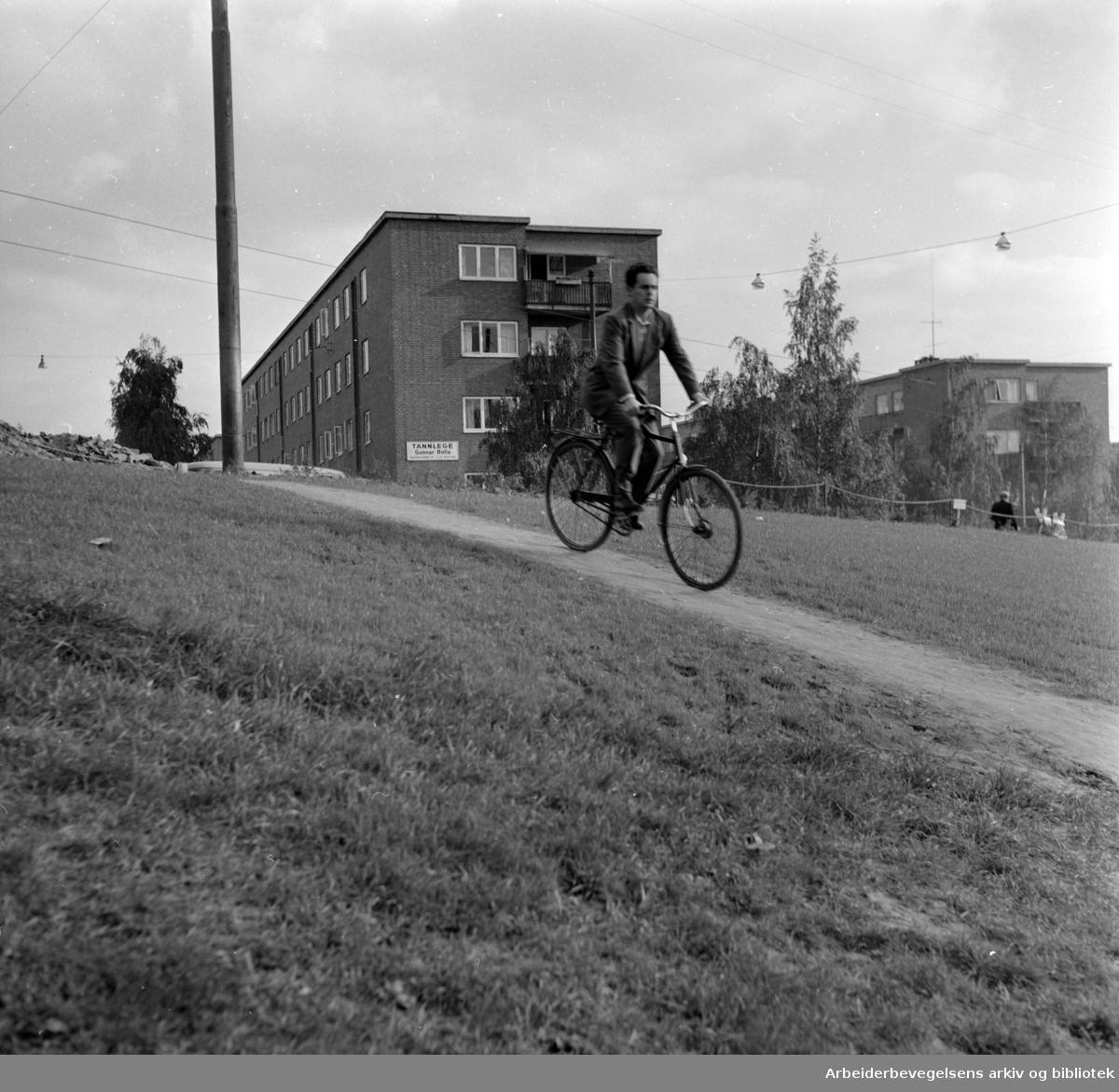 Torshovdalen park. Gangsti. September 1960