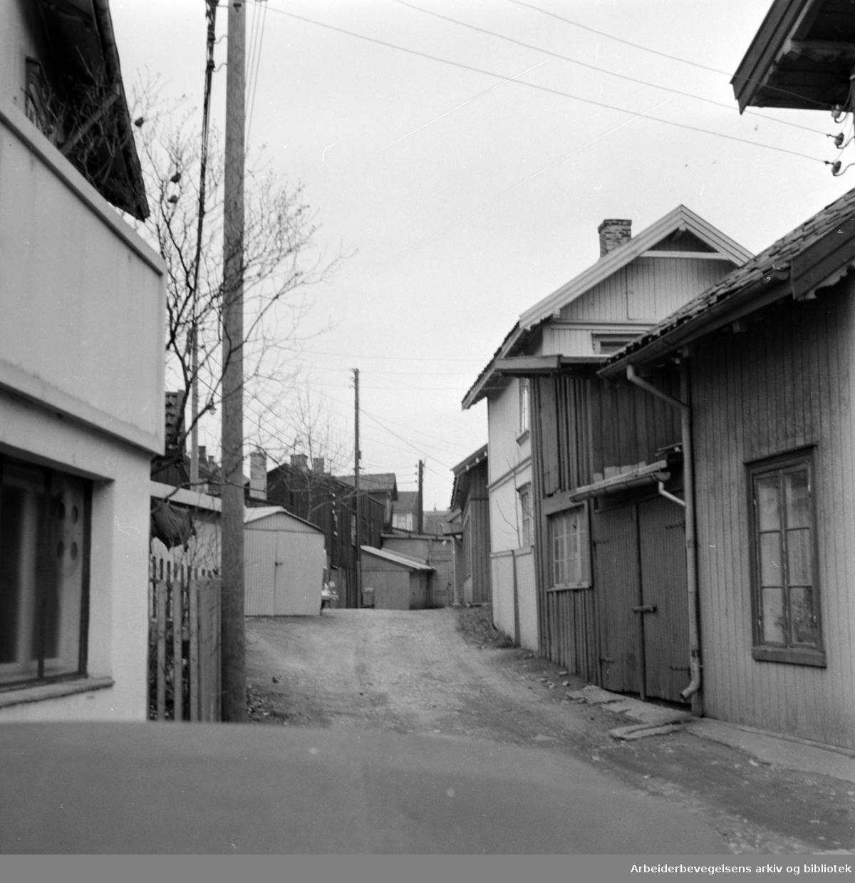 Snippen på Rodeløkka. November 1957