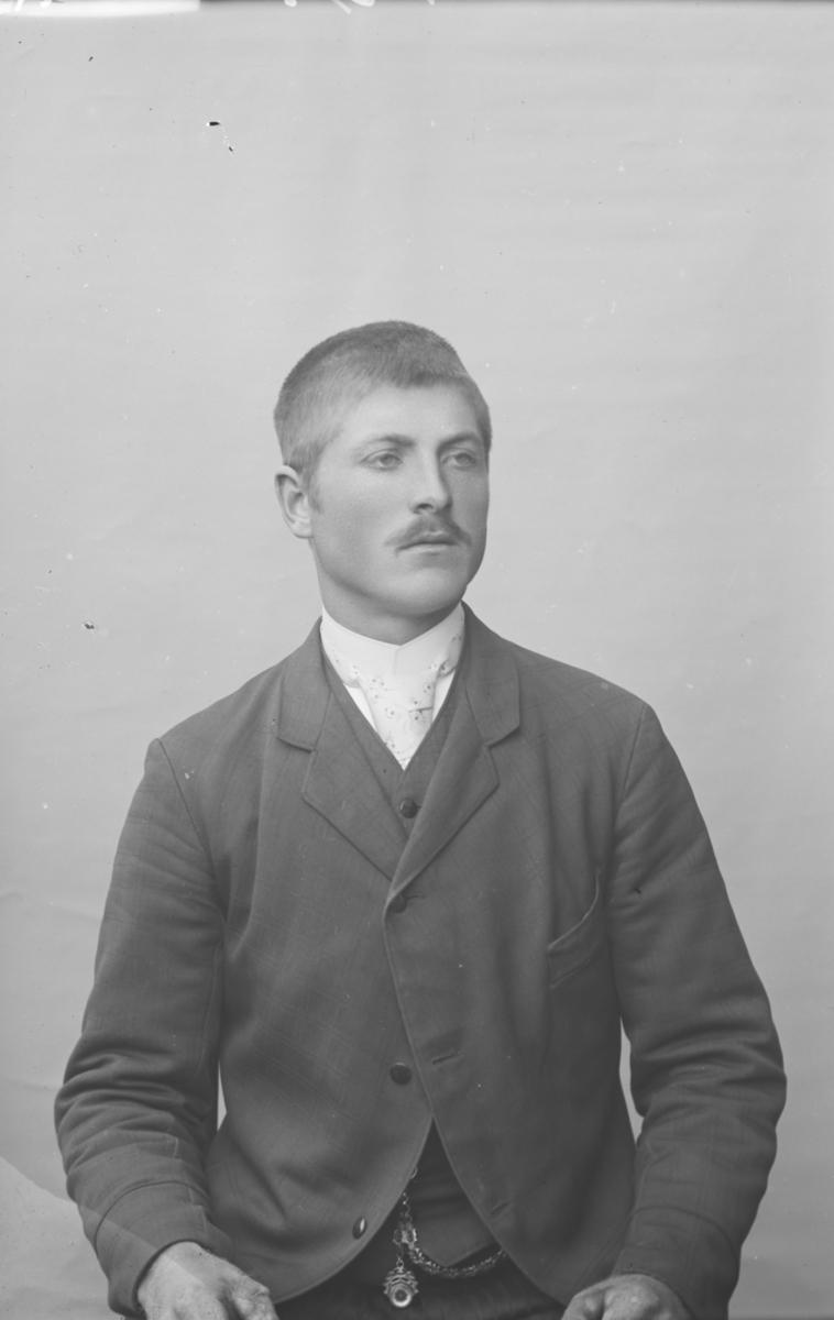 Portrett, mann, brystbilde, N.F. Hansen