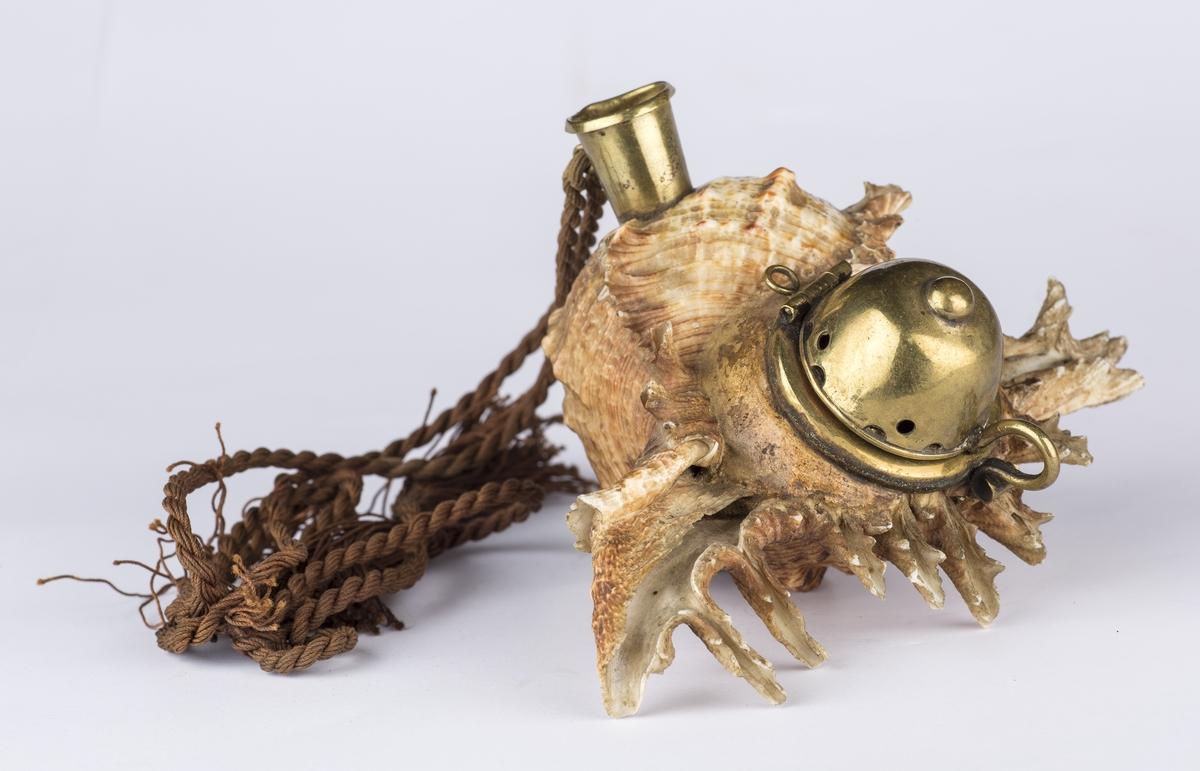 Pipehode lagd av et stort sjøsneglehus. Pipelokk og holk for munnstykket i messing. Brun pyntesnor.