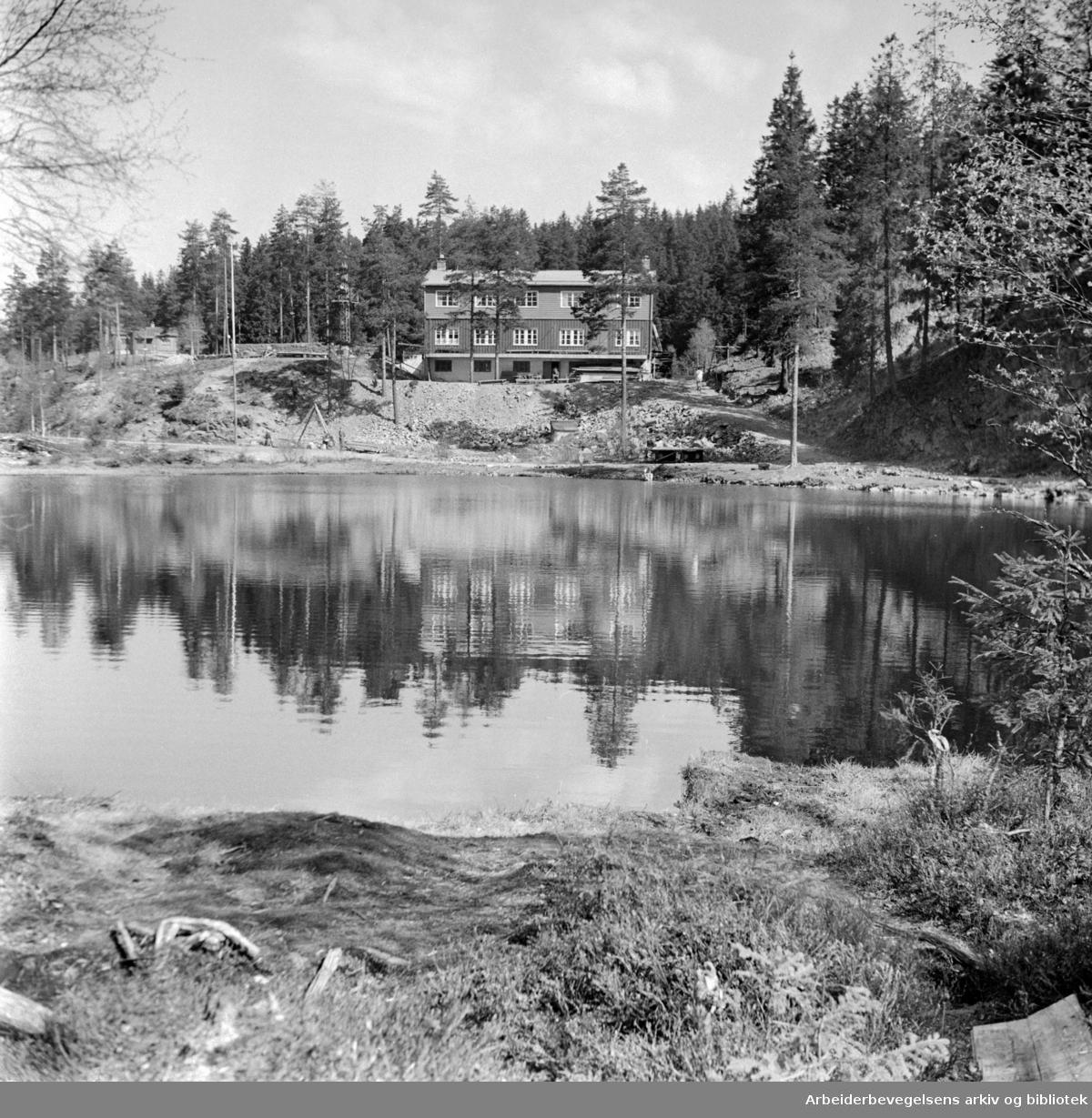 Linderudkollen. Juni 1957