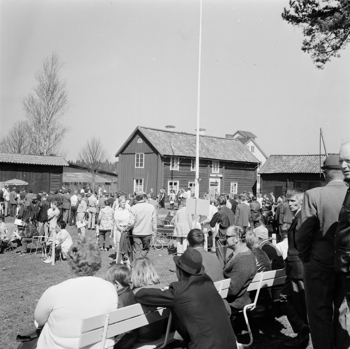 Älghundutställning i Tierp, Uppland, maj 1971