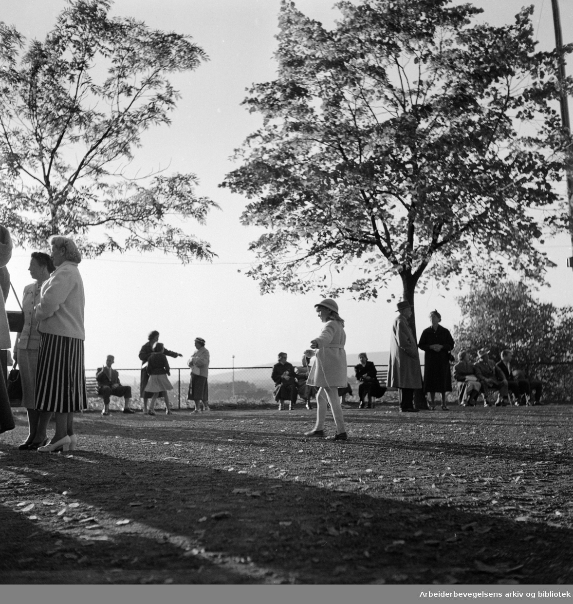 Frognerparken. September 1956