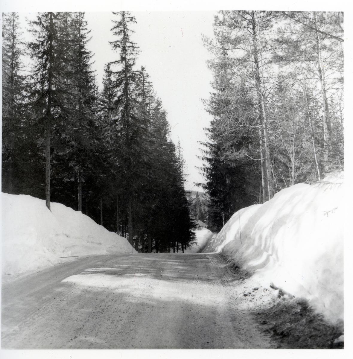 Vegen Høljarast - Bruflat. Før vegomlegginga.