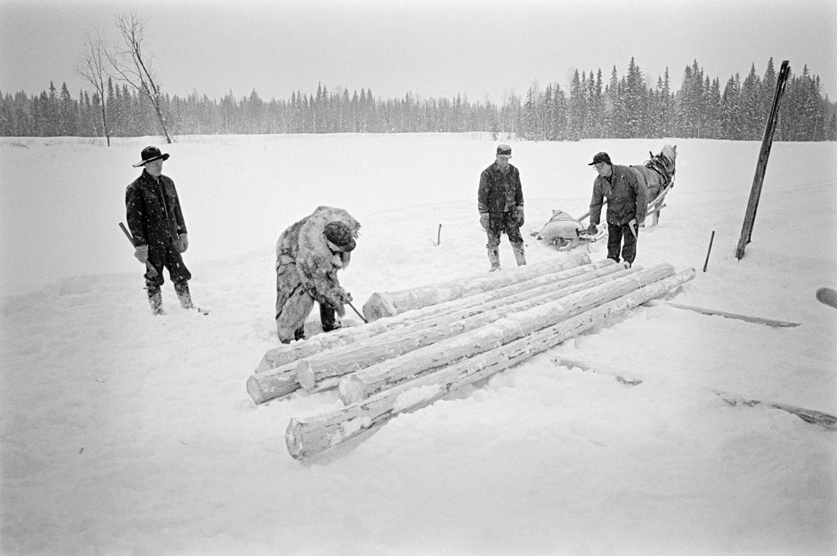 Tømmermåling i Nordre Osen (Åmot kommune i Hedmark) vinteren 1980.  Fotografiet er tatt på ei åpen, snødekt flate, antakelig en tilfrosset innsjø.  I forgrunnen ligger ei lita flakvelte – ett lag med parallelle tømmerstokker vinkelrett på to underlagstokker.  Lengst til høyre på dette fotografiet sto en kar med en skyveklave i handa.  Dette redskapet ble brukt til å registrere diametermålene på stokkene.  Diameter- og lengdemål, som var påslått stokken med romertall under apteringa i skogen, ble loggført i «stikkboka» som den pelskledde tømmermåleren holdt i hendene.  Lengst til venstre sto Paul Granberg, som her hadde rollen som «påslager», med ei merkeøks i handa.  Denne øksa hadde en profilert egg som gjorde det mulig å slå tømmerkjøperens symbol på stokken, som et kjennemerke når tømmeret kom i fløtingsvassdrag der det var virke som skulle til mange tømmerkjøpere.  Den pelaskledde mannen som bøyer seg for å «klave» (diametermåle) en stokk er Birger Nysæther. Deretter følger tømmerkjøreren Ole Rismyr fra Slettås i Trysil.  Fjordingen hans sto i bakgrunnen. Mannen helt til høyre på bildet er Ole Sagen.  Fotografiet er tatt i forbindelse med opptakene til fjernsynsfilmen «Fra tømmerskog og ljorekoie», som ble vist på NRK 1. mai 1981.  Ettersom poenget med denne filmen var å synliggjøre strevet i tømmerskogen i den førmekaniserte driftsfasen, viser den driftsprosedyrer og redskap som bare noen få veteraner fortsatt brukte på opptakstidspunktet.