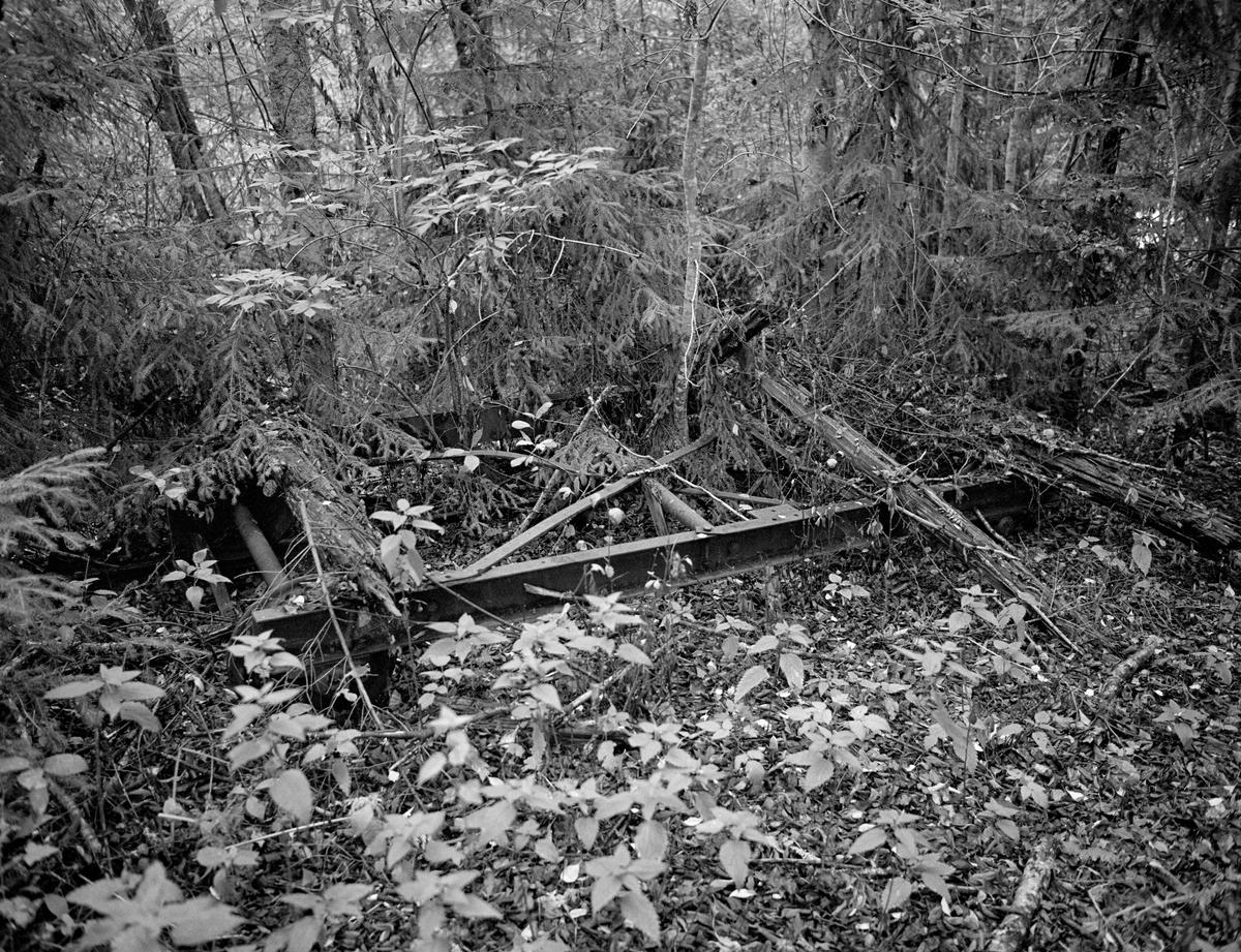 Delvis nedgrodd tømmertralle ved Otteid kanal – mellom innsjøen Stora Le (Lesjön, 102 m. o. h.) i grensetraktene mellom Värmland og Dalsland på svensk side og Øymarksjøen (107 m. o. h.) i Østfold på norsk side.  Her fikk den tekniske pioneren Engebret Soot (1786-1859) i perioden 1925-1827 bygd en såkalt «nivåkanal» med henblikk på overføring av tømmer fra skogtraktene og vassdraget på svensk side til Haldenvassdraget og norske trelasthandlere.  På bakkekammen mellom de to nevnte innsjøene ligger Skinnarbutjernet (113 m. o. h.).  Soot fikk bygd en trallebane for transport av tømmer fra Stora Le opp til dette tjernet.  Den avbildete tralla ble lastet med tømmer og kjørt på denne strekningen.  Den besto av ei rektangulær jernramme med støpejernhjul («jernbanehjul»), plassert i enden av akslinger som var avpasset etter sporbredden. På oversida av ramma ser vi råtne endekavler av tre, som må ha tjent som underlag for tømmeret som skulle trekkes opp til Skinnarbutjernet.  Fra vestenden av tjernet ble det gravd en kanal videre mot Øymarksjøen.  Ved enden av denne kanalen var det en kjerrat, som gjorde det mulig å løfte tømmerstokkene opp fra kanalen og føre dem ned mot Øymarksjøen.  Derfra kunne de fløtes videre mot Halden.  Otteid kanal var i drift helt fram til 1956, altså i 129 år.  Dette fotografiet er tatt 27 år etter at bruken av anlegget hadde opphørt, noe som forklarer gjengroinga.  En liten historikk om tømmerfløting og kanaliseringsarbeid i Haldenvassdraget finnes under fanen «Opplysninger».
