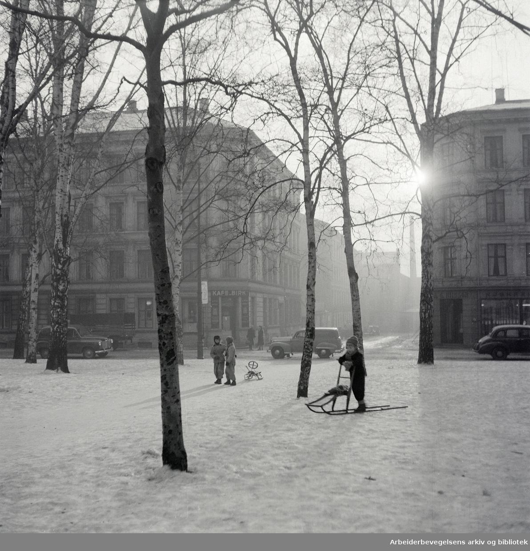 Birkelunden. Januar 1953