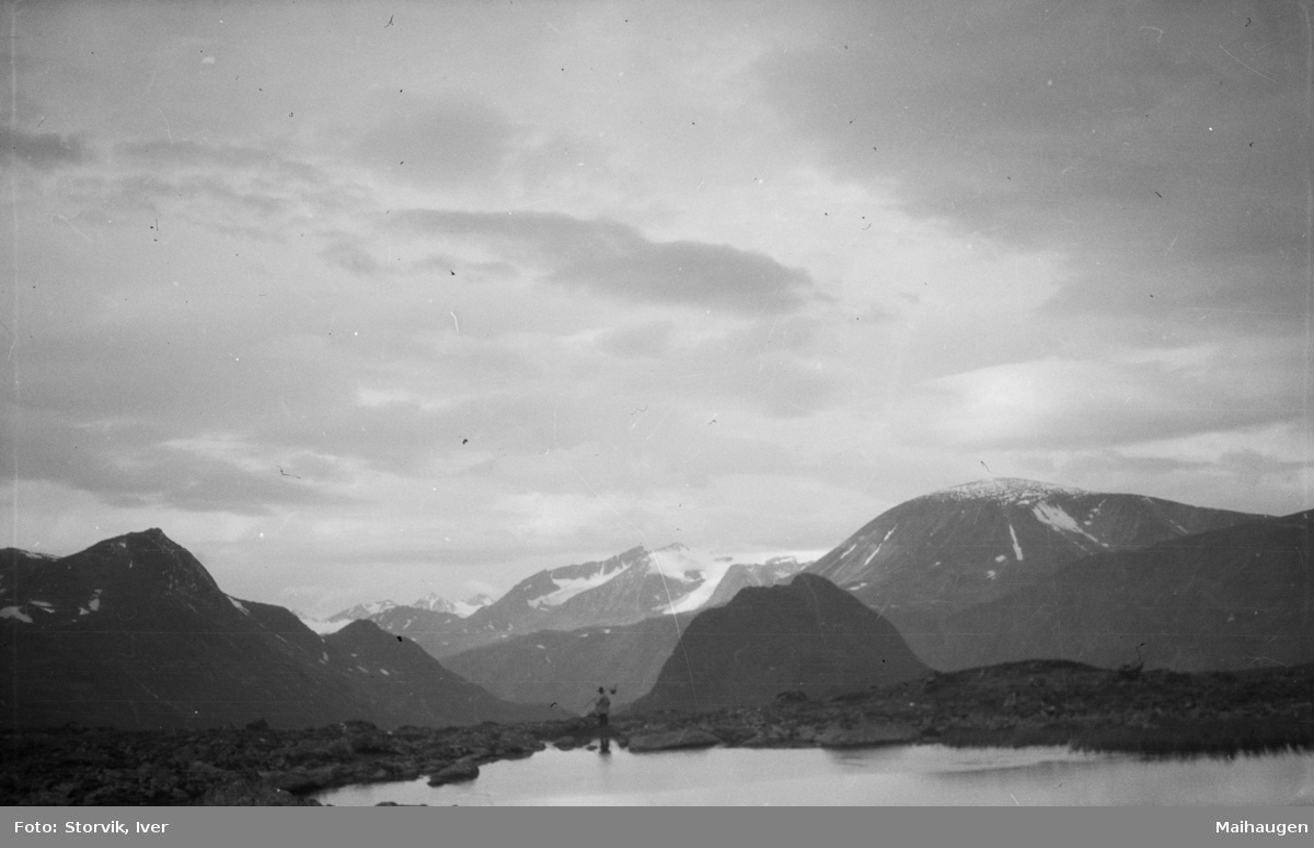 Jotunheimen, mot Knutshøe, Besshø og Surtningssue