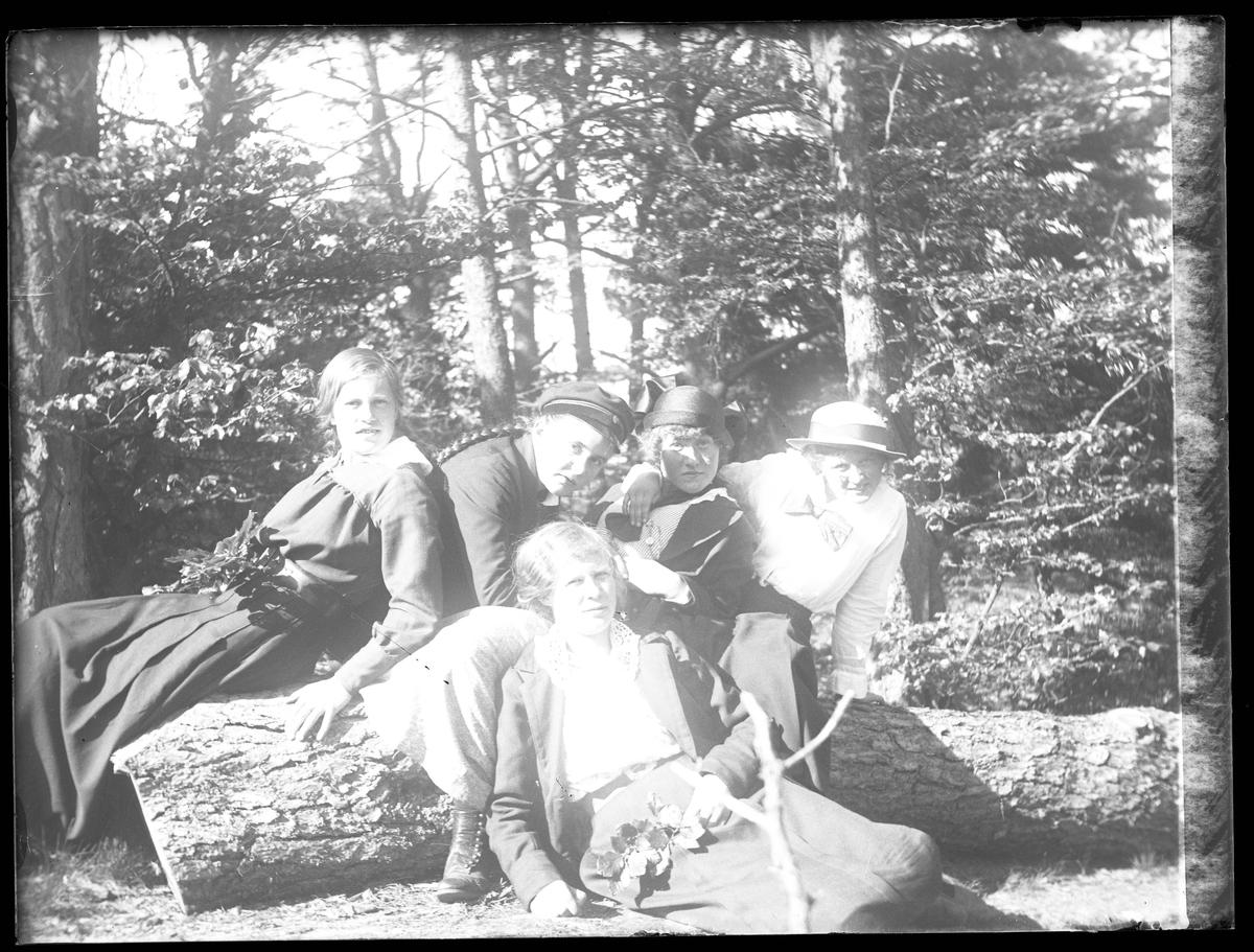 """Fem flickor poserat på ett fallet träd i skogen. I fotografens egna katalog står antecknat """"6:e klassens flickor""""."""