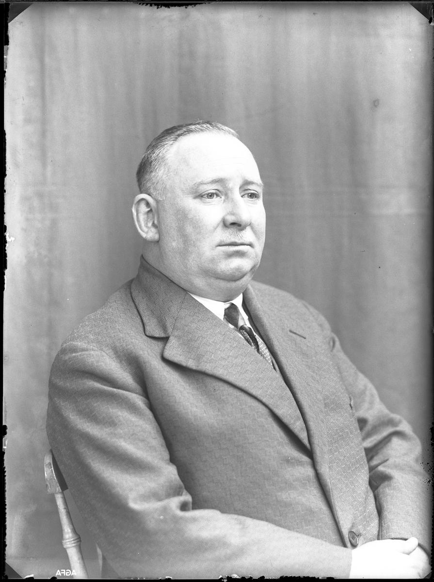 """Porträtt av man i ljus kostym, smal slips och mustasch. I fotografens egna anteckningar står det """"Vogel""""."""