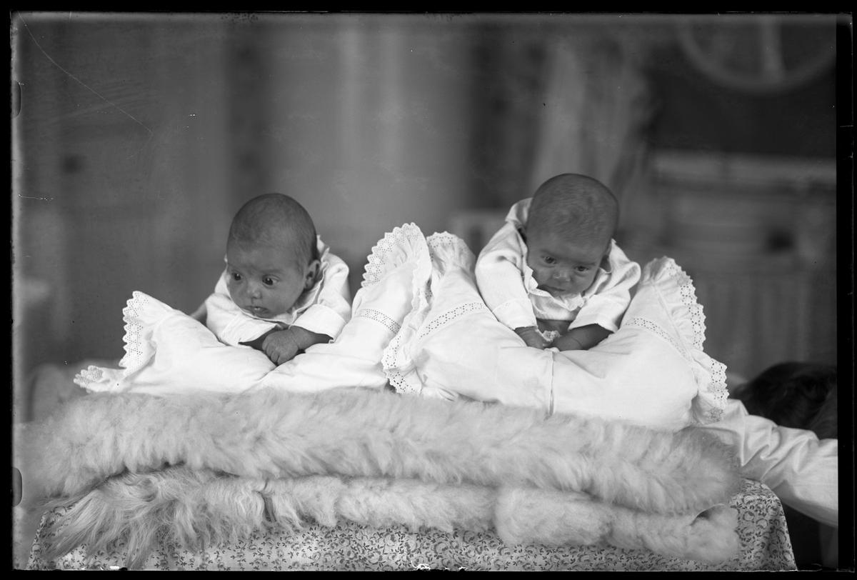 """Två bäbisar, ett tvillingpar, klädda i vitt ligger på mage över kuddar och fällar. I fotografens egna anteckningar står det """"Ing[enjör] Bergs tvillingar""""."""