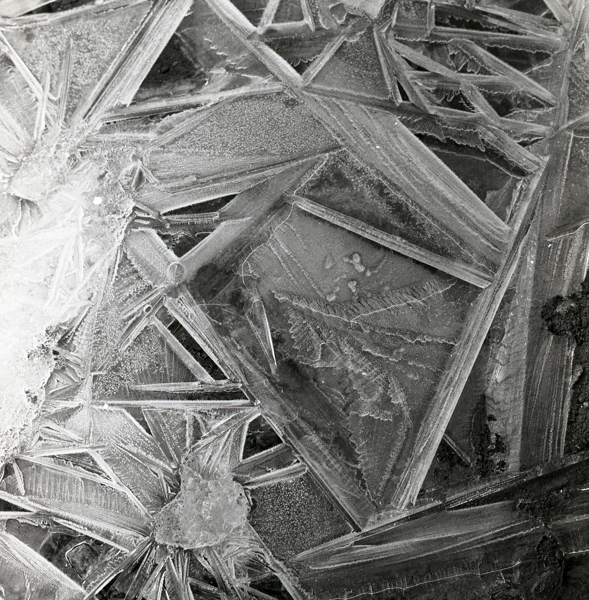 Iskristaller, februari 1960.