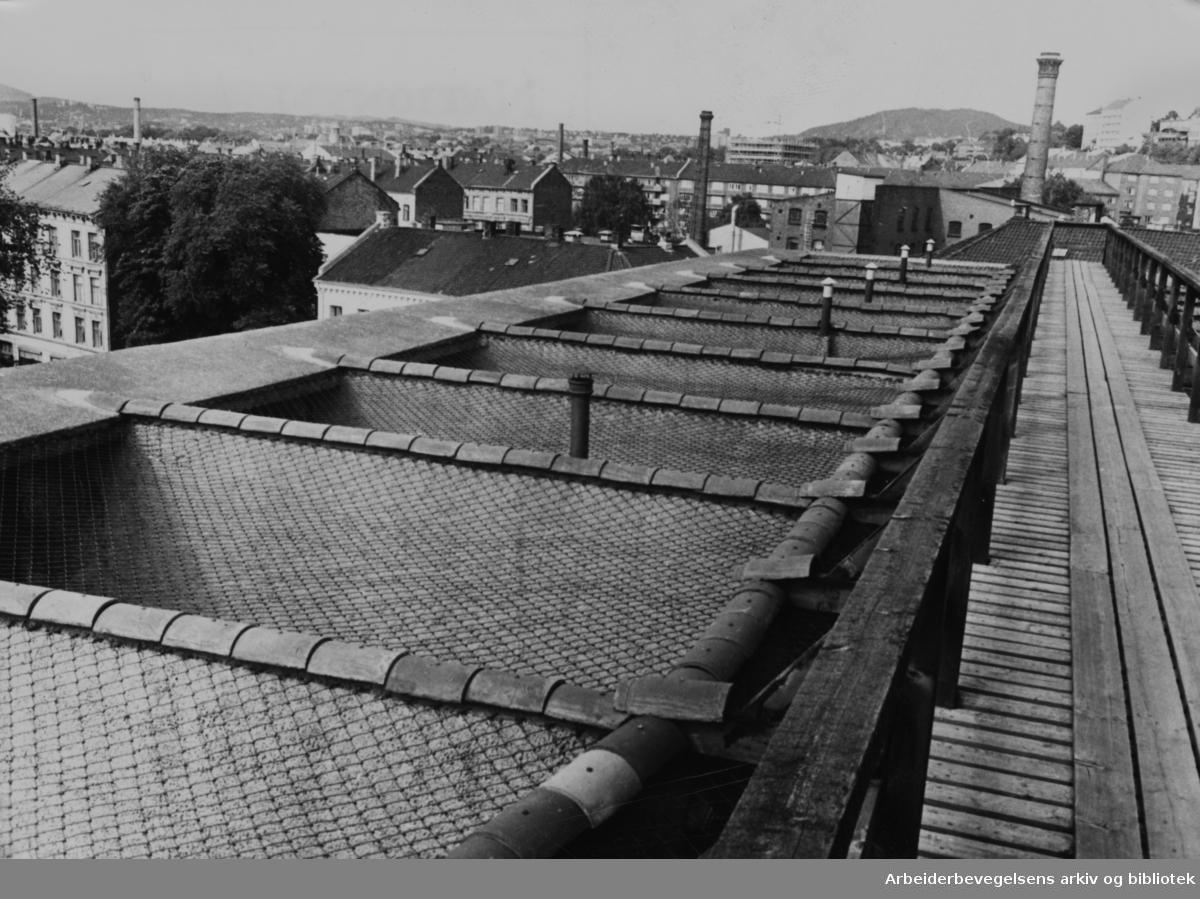 Botsfengslet. Lufteburene. August 1967