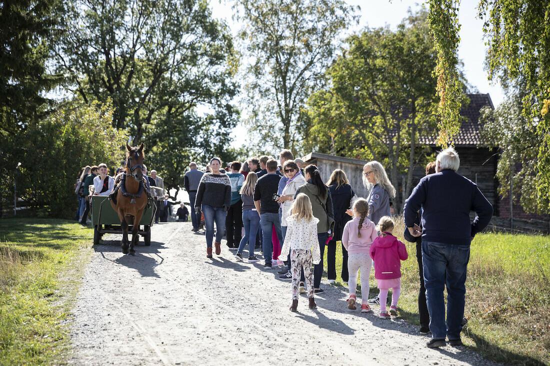 På vei opp tunet, Gamle-Hvamsdagen (Foto/Photo)