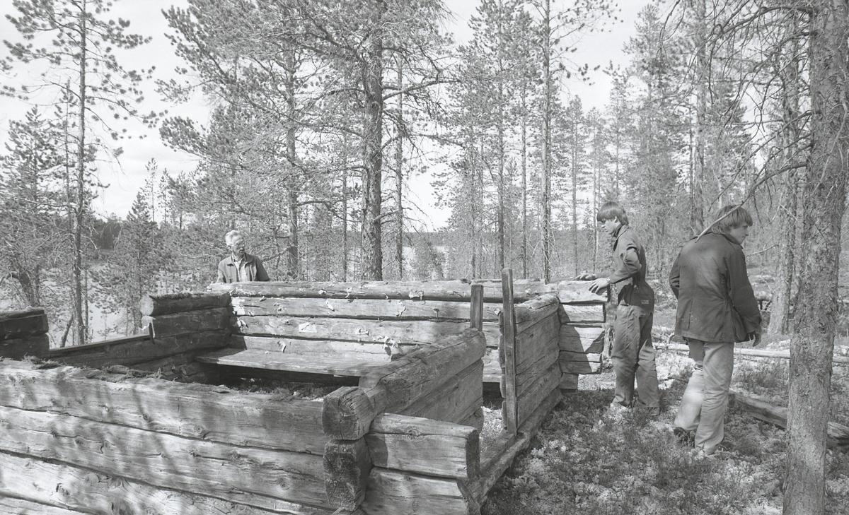 Blokkodden. Stall Skjærvangstjønna 1-2. Koie Lennsmannsberget 3-6. Reising(?) Fiskebu Kuneset 7-32