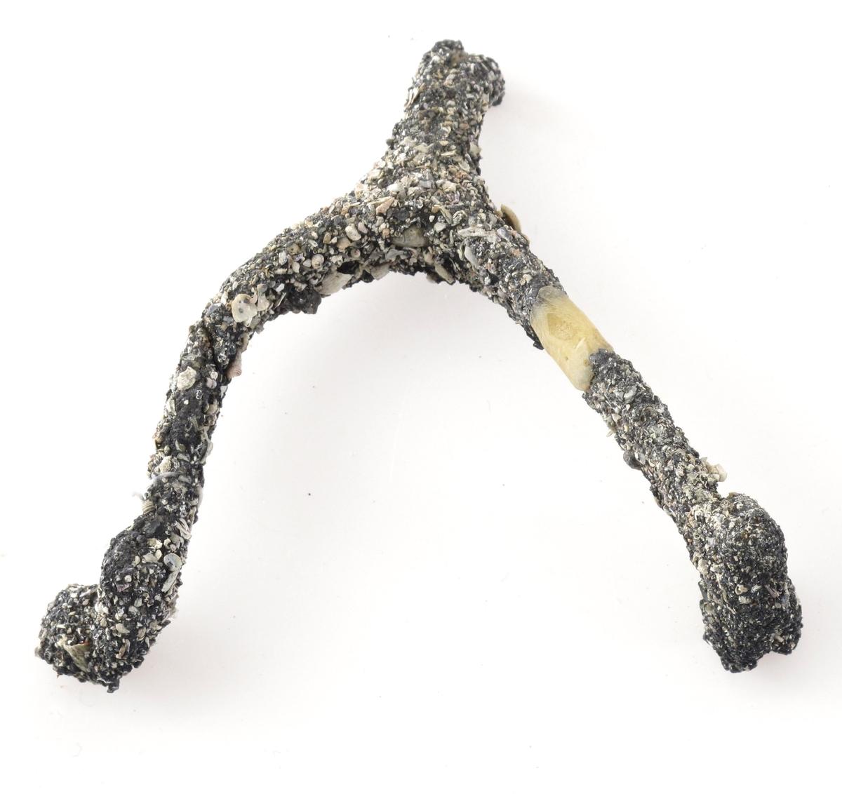 Spore, skjellbegrodd.    Materiale: stål eller sølv (?)  Liten spore, nå begrodd med bitte små skjell og  stein.  Preparert og holdt sammen av plastmasse.