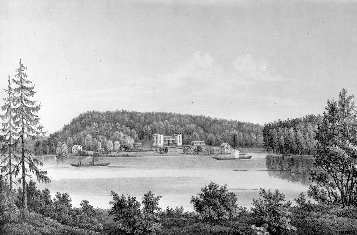 Anna Lisa Johannesson (Andersdotter) (1850 - 1940 - Geni