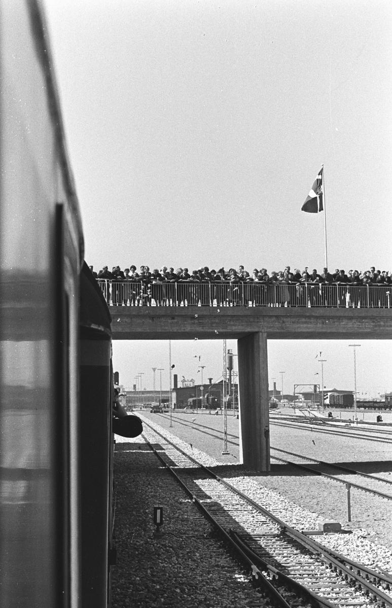 """Invigning av """"Fågelvägslinjen"""" mellan Rodbyhavn, Lolland, Danmark och Puttgarden, Fehmarn, Tyskland. Den nya färjelinjen kallas """"Fågelvägslinjen"""", på danska Fugleflugtslinien och på tyska Vogelflugslinie, eftersom linjen följer flyttfåglarnas flygrutt"""