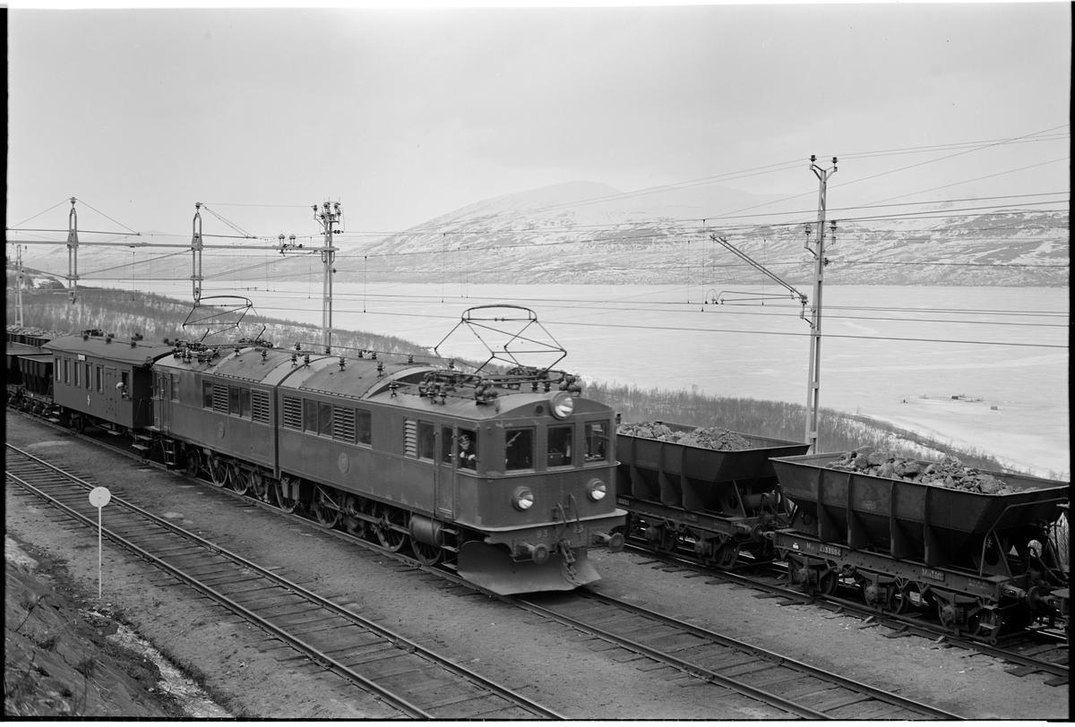Multipelkopplade Of-lok, SJ Of 93 och SJ Of 94 med tomma malmvagnar möter ett fullastat malmtåg vid Kaisepakte mötesstation. Bland malmvagnara syns bl a SJ Mas 33594 och SJ Mas33650.