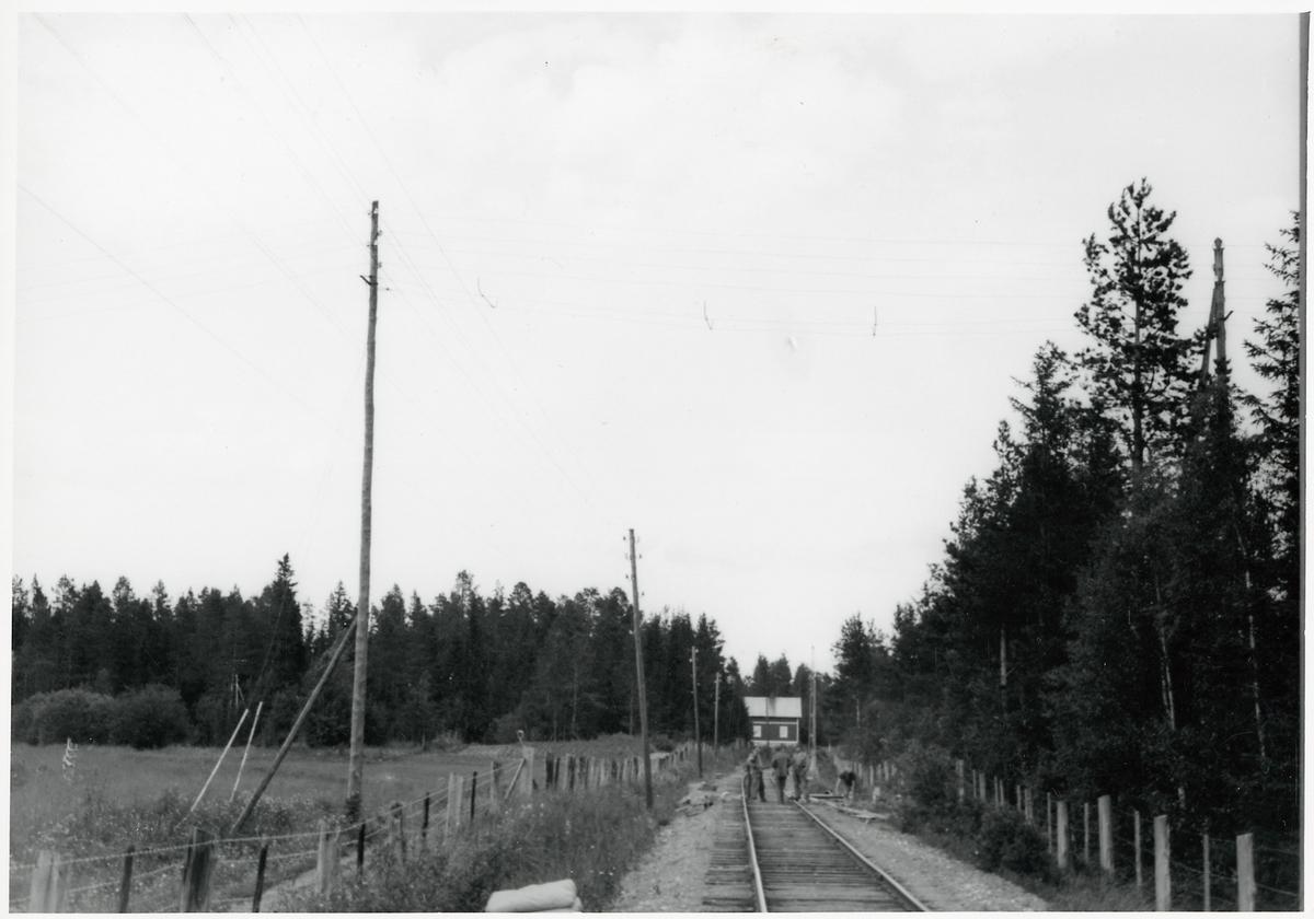 Elektrifieringsarbete på linjen mellan Trångsviken och Mattmar.