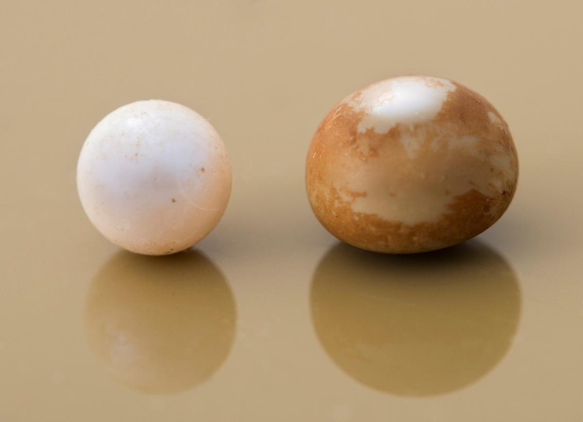 2 perler fra elvemusling: en hvit og en som er gråbrun og blank. Den gråbrune og blanke har en diameter på cirka 7 mm. Den blanke er målt til cirka 5 mm i diameter. Begge perler har en rund form.