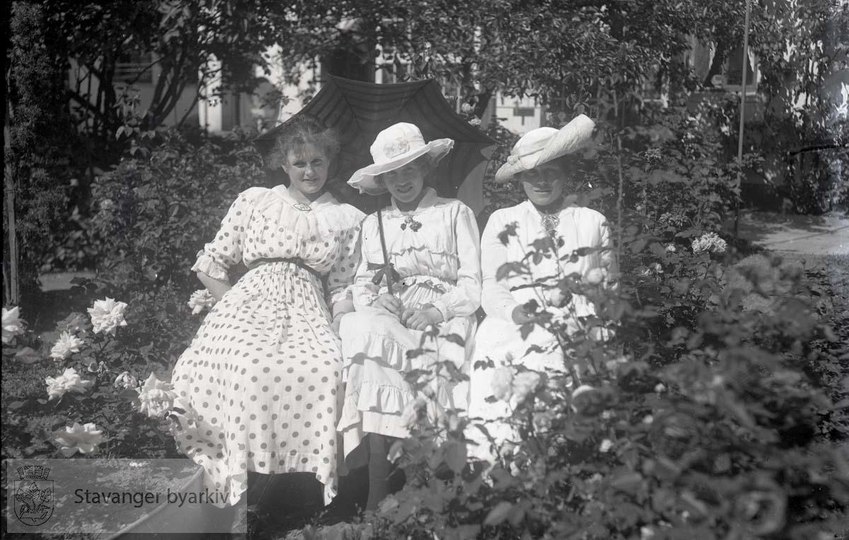 Tre damer i skog eller hage