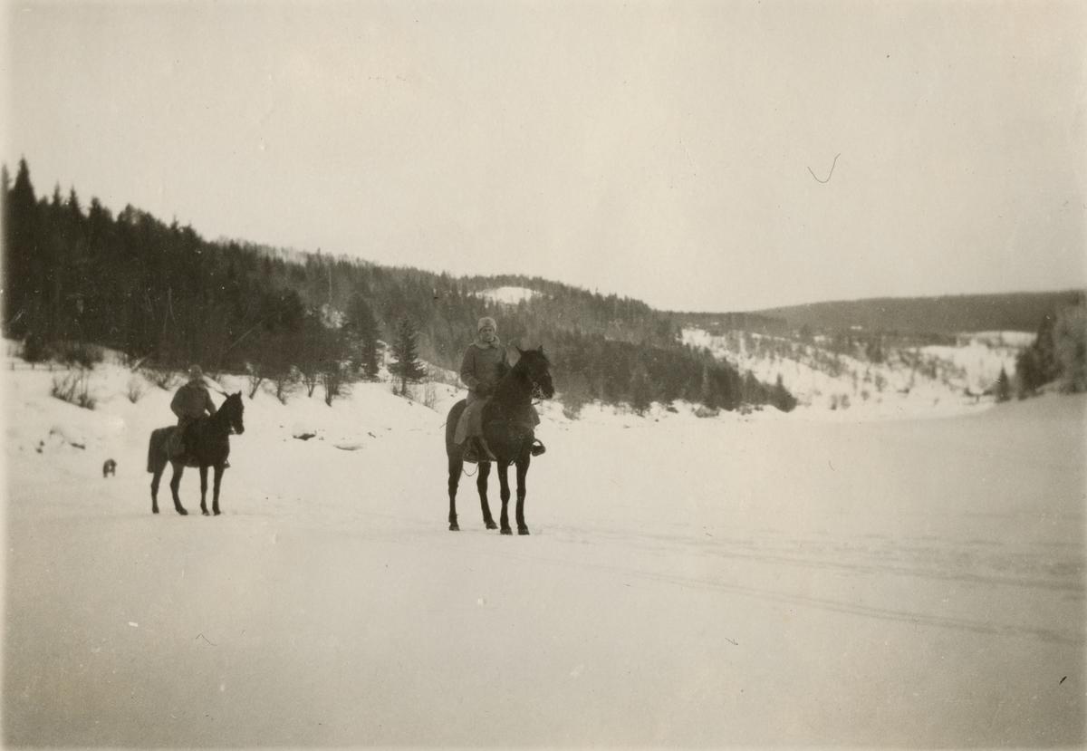 Soldater till häst.