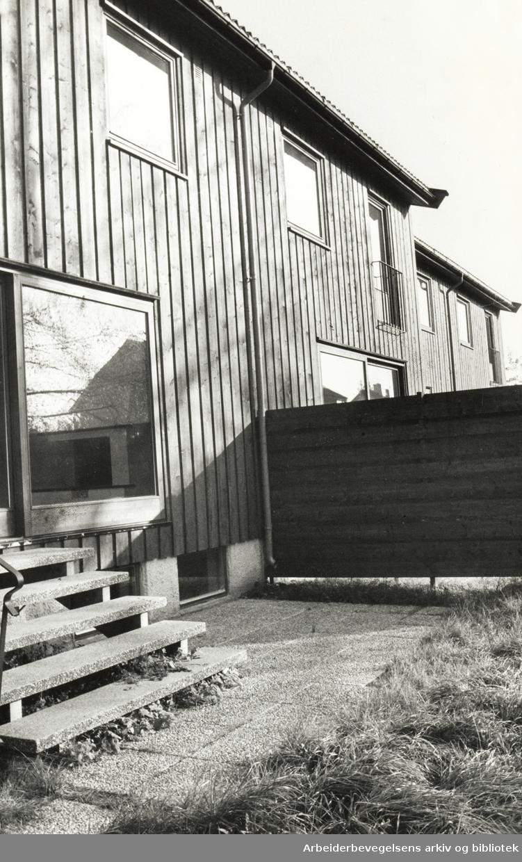 Holmen. Bolighus som står tomme. Oktober 1975