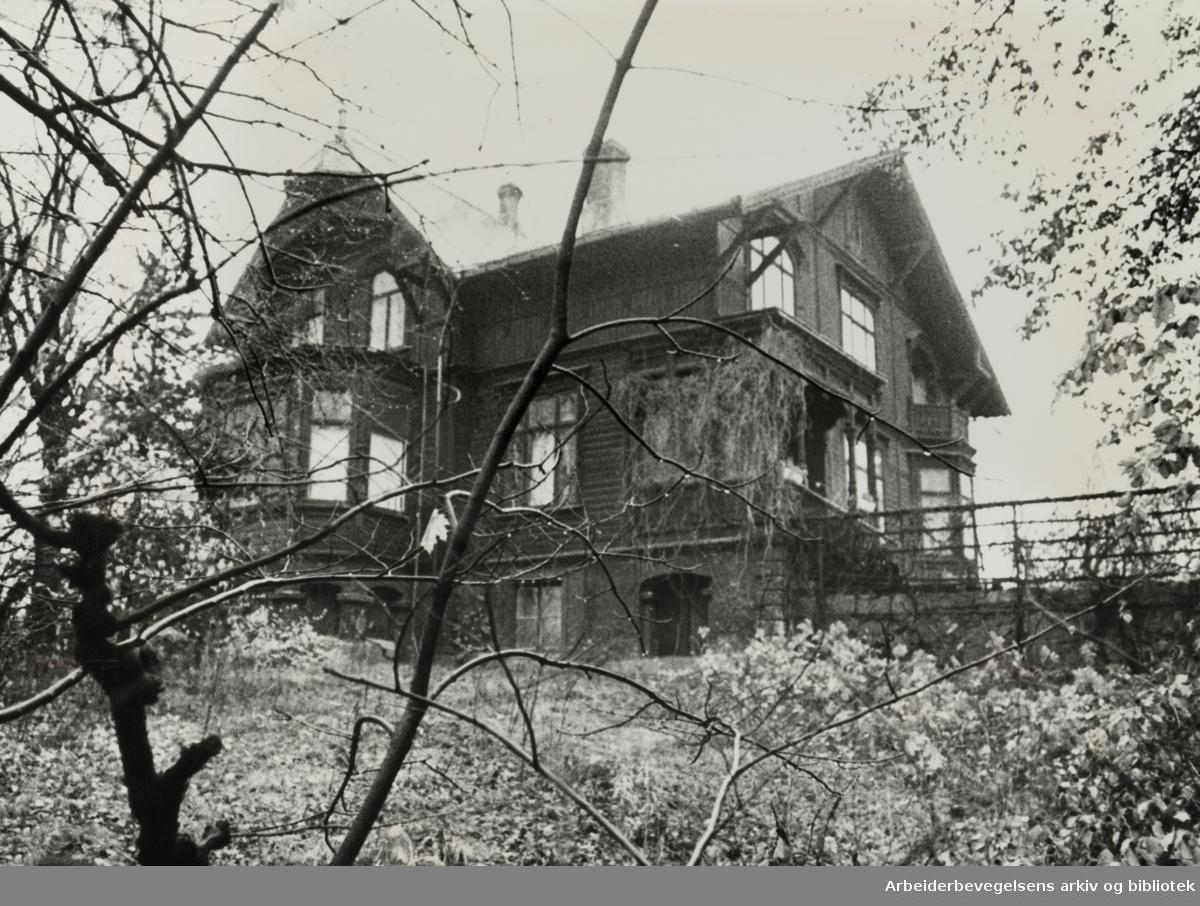Kruses gate 7. 12. november 1976