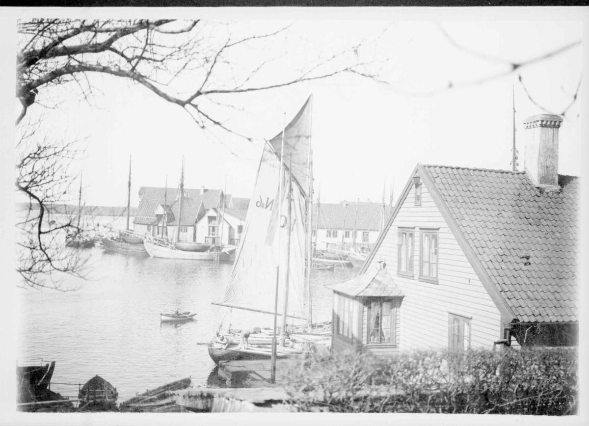 Repro: Havnebilde med hus og båter. Uskarpt bilde.