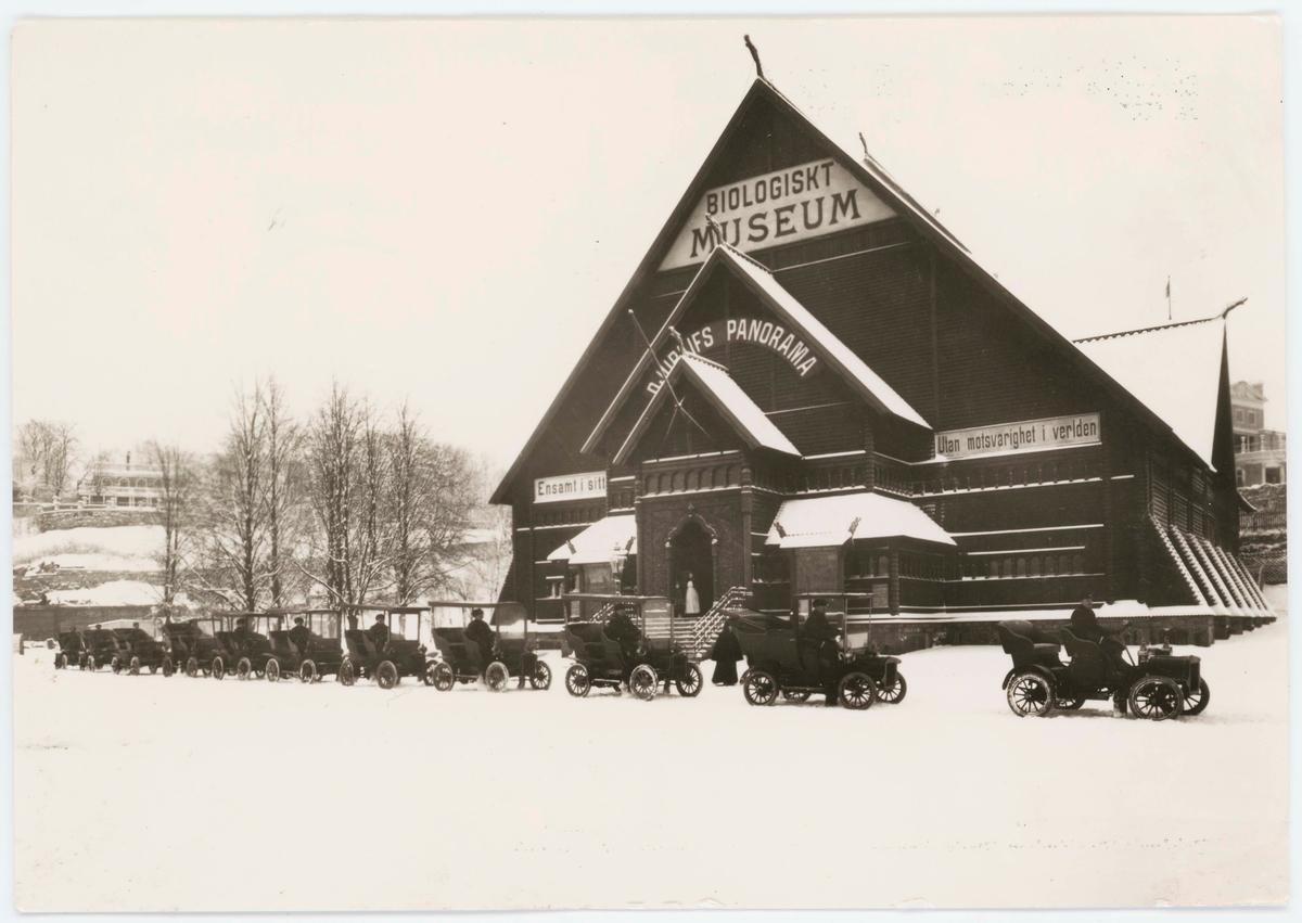 """Vykort med motiv från Skansen. """"Taxibilar utanför Biologiska Museet ca 1908."""" """"Taxis outside the Biological Museum ca. 1908."""""""