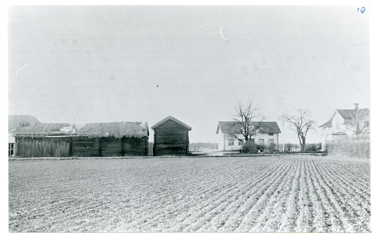 Norrby socken, Sala, Härsta. Härsta gård, c:a 1920.