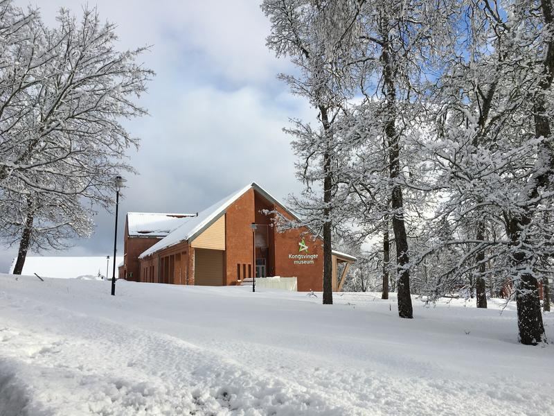 Gyldenborg i vinterskrud