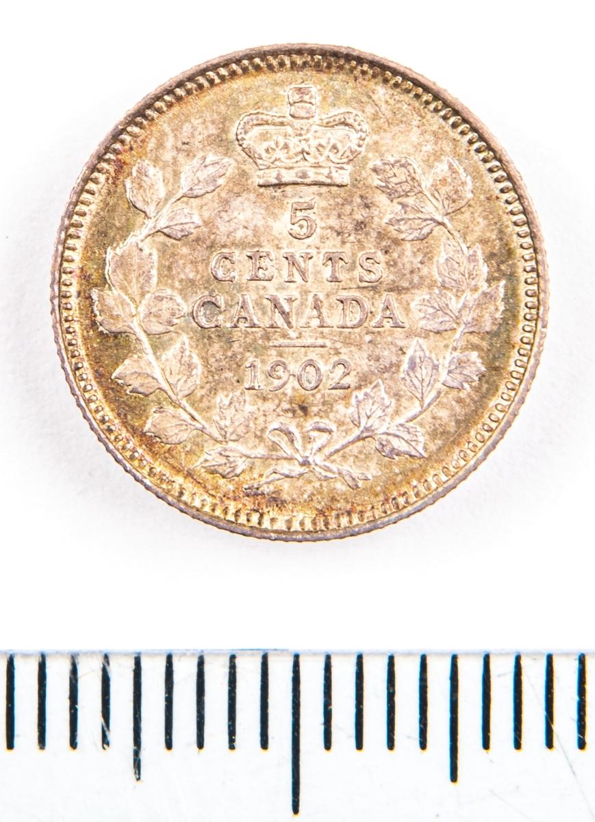 Mynt, Canada, 1902, 5 Cents.