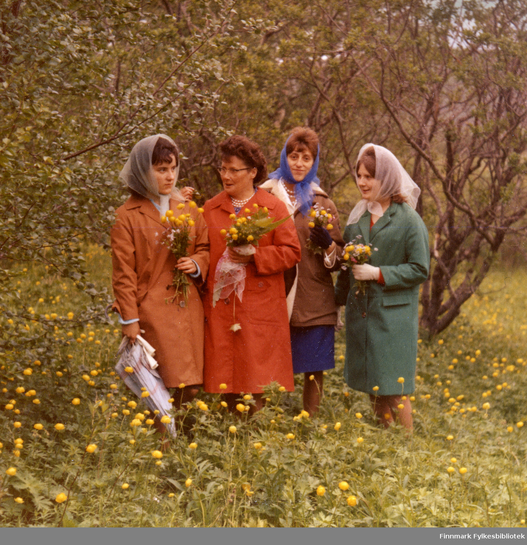 Sonja, Berit, Kirsten og Solveig har plukket ballblom (Trollius europaeus) og poserer i sine fine 50-tallskåper og chiffon-skjerf i Tana i 1964. Bildet er fra et privat album tilhørende Vuolab-familien.
