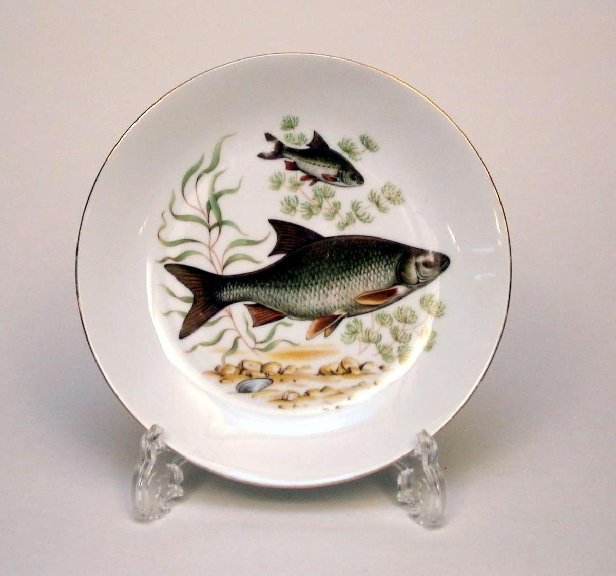 Hvit tallerken med gullkant og fiskemotiv.