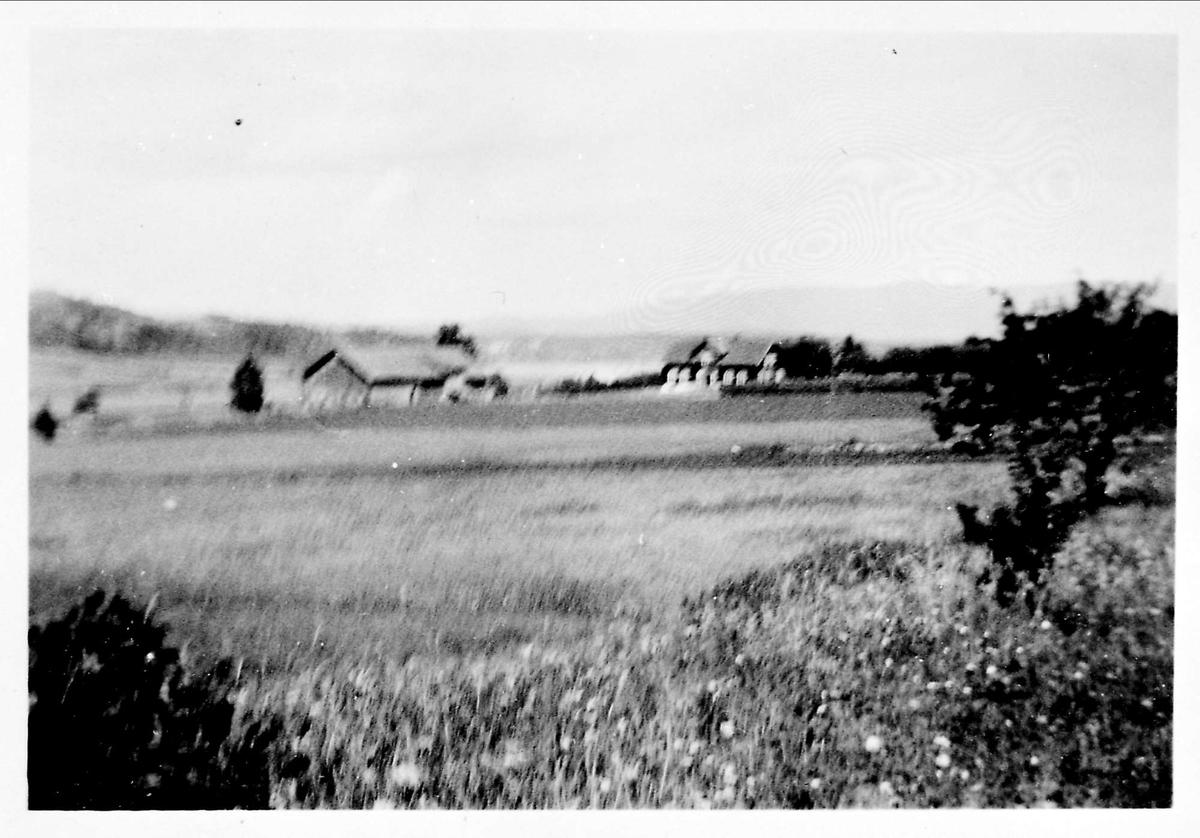 Landskap, gård