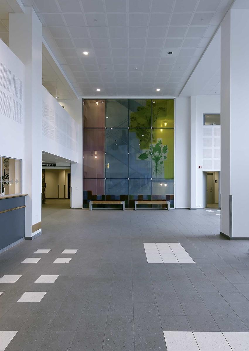 Digitalt trykk på folie som er laminert mellom to glassplater.8 deler 150x 125cm ca, 4 glass 300x125cm ca