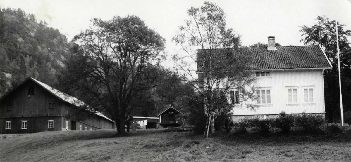 Åmlibilder Berås, g.nr. 72, br.nr. 2