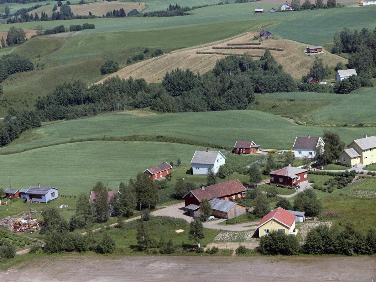 HOLTER VESTLYKKJA