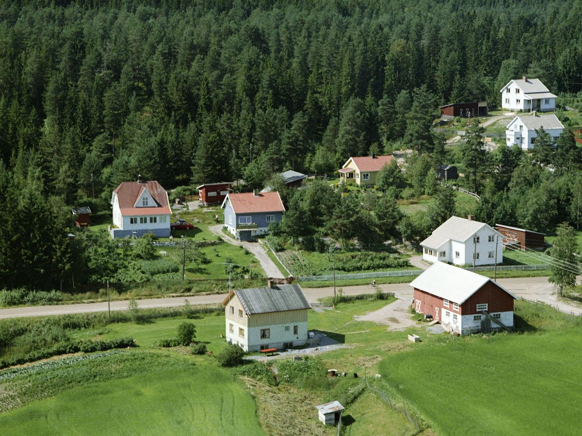 STUELYKKJA, ÅSGREINA