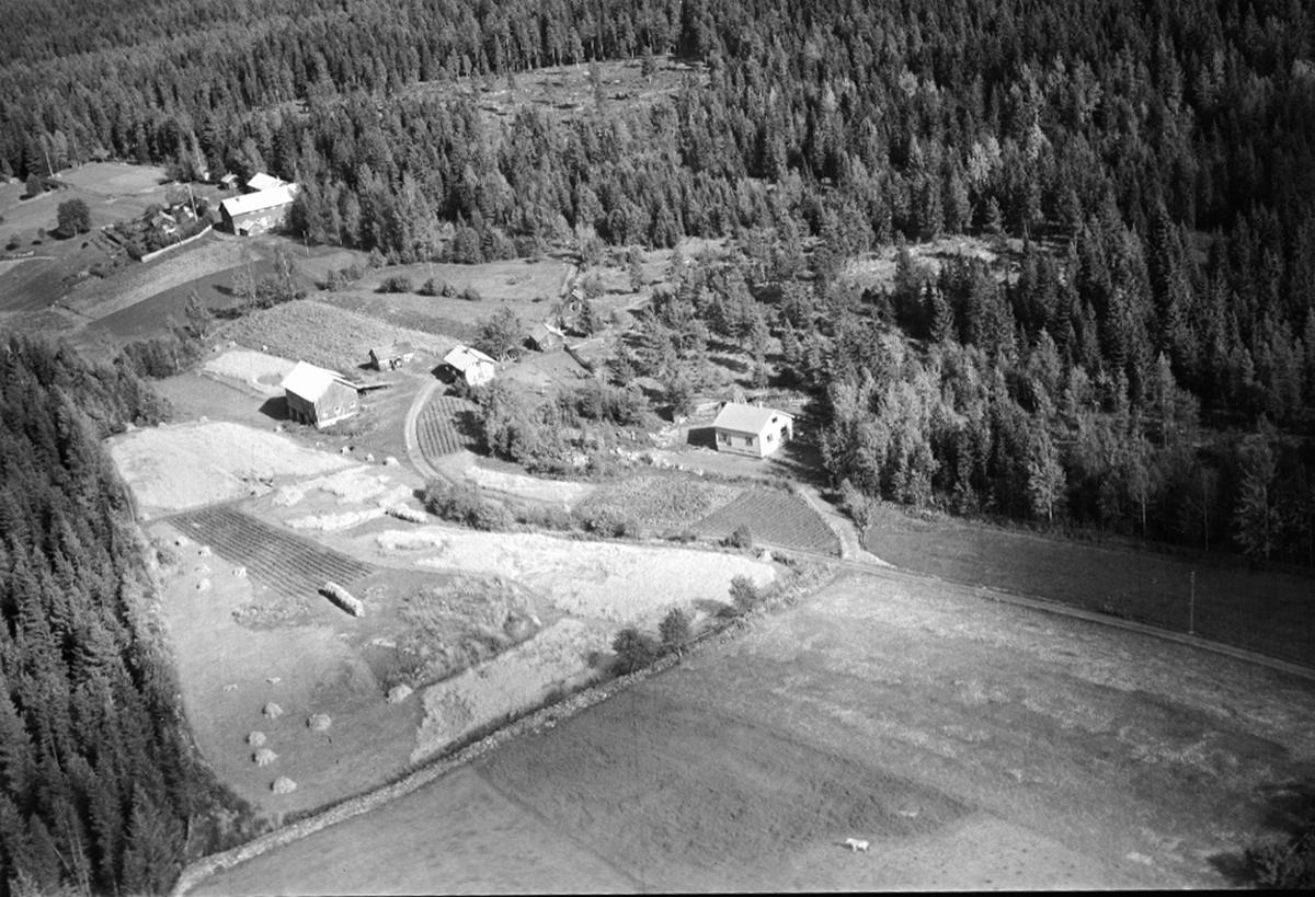 FLYFOTO LINDÅS262-18, TINGSTADRØNNINGEN (HUSESTURYDNINGEN) 262-2, ÅSVANG