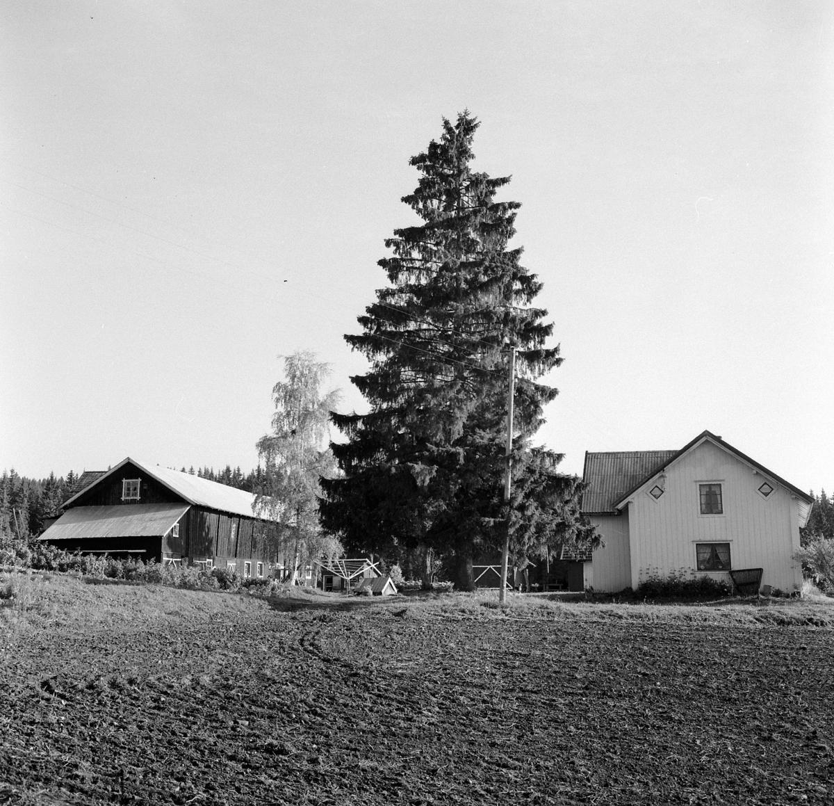 KLEIVEN I VELDRE. 1965. GNR. 19 - BNR. 2. VELDRE BYGDEBOK 1974 SIDE 182. FOTOGRAF EIVIN LØKKEN.