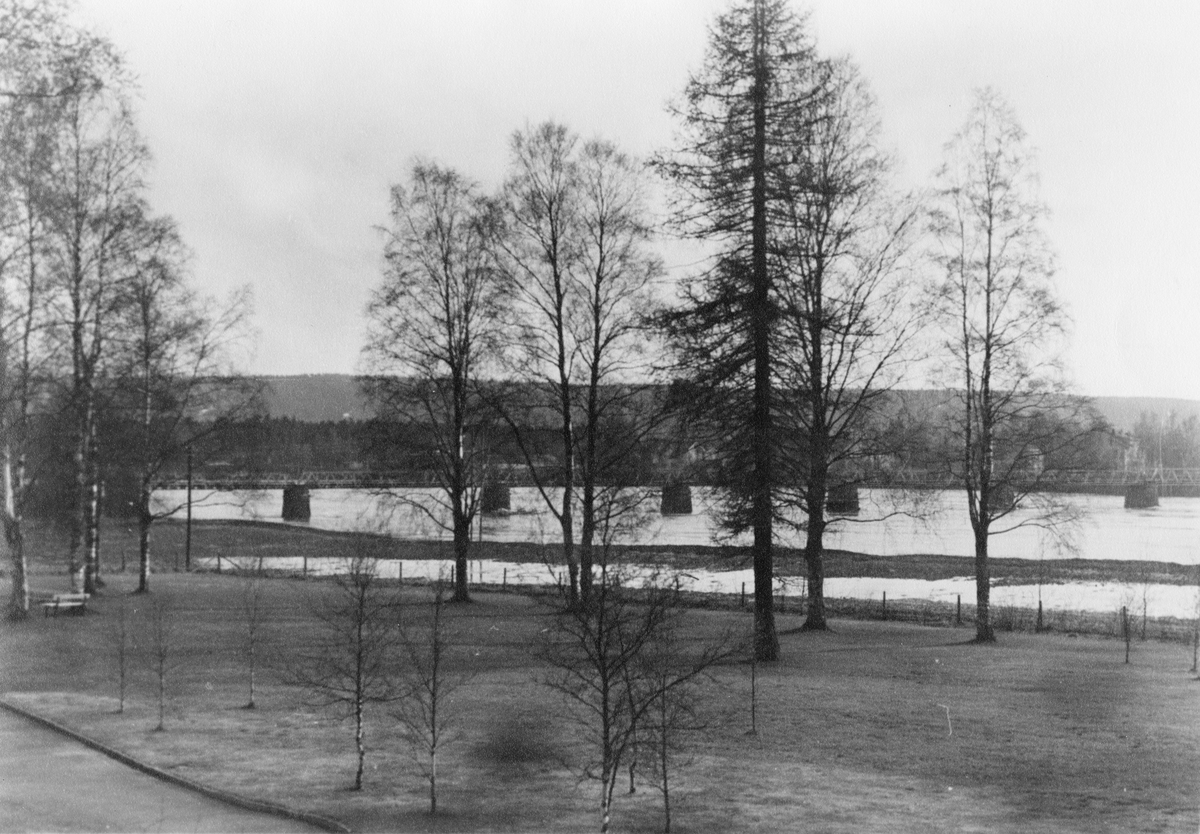 Evjeparken og Gamlebrua
