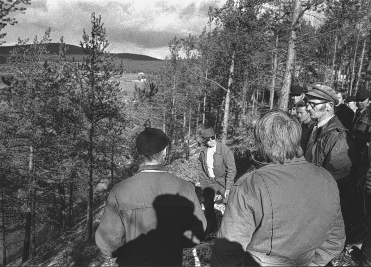Folldal, Damanlegg, Menn i skogen