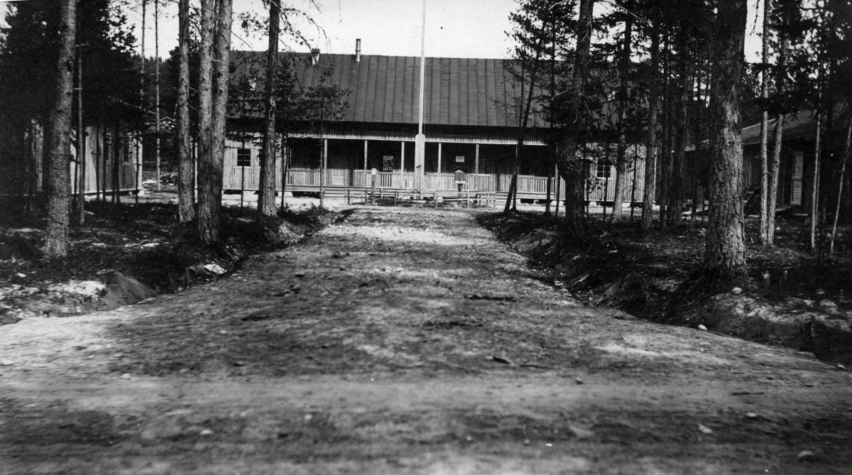 Torvskole