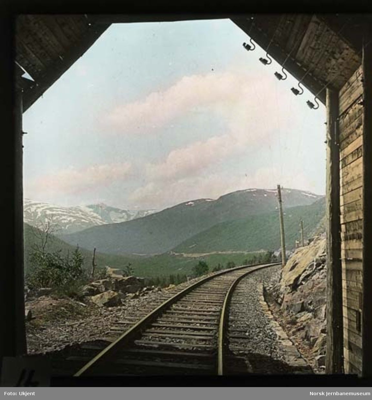 Bergensbanen sett vestover mot Mjølfjell stasjon og Almenningen gård