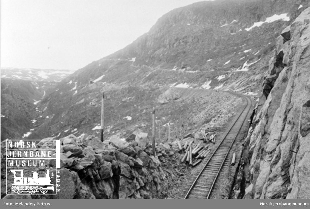 Ofotbanen ved Fagerli med Norddalsbroen i bakgrunnen