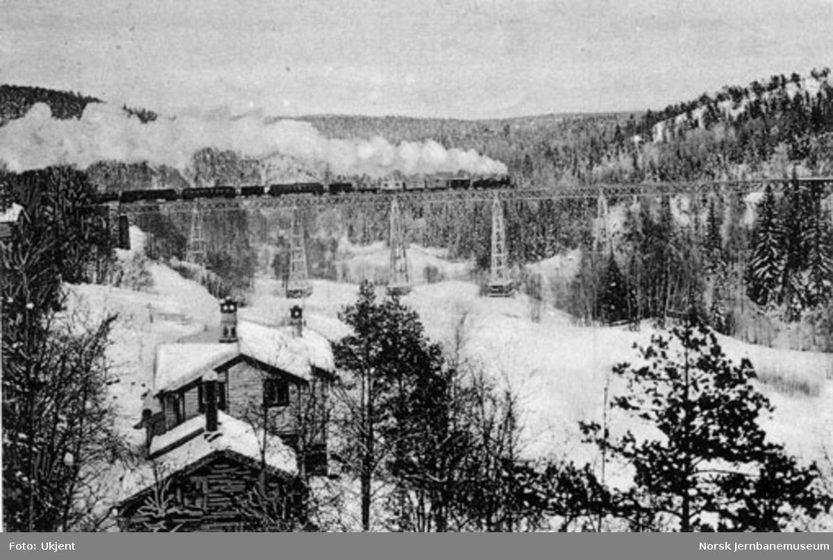 Ljansviadukten med et langt blandet tog